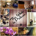 This Week in Pictures, Week 14, 2015