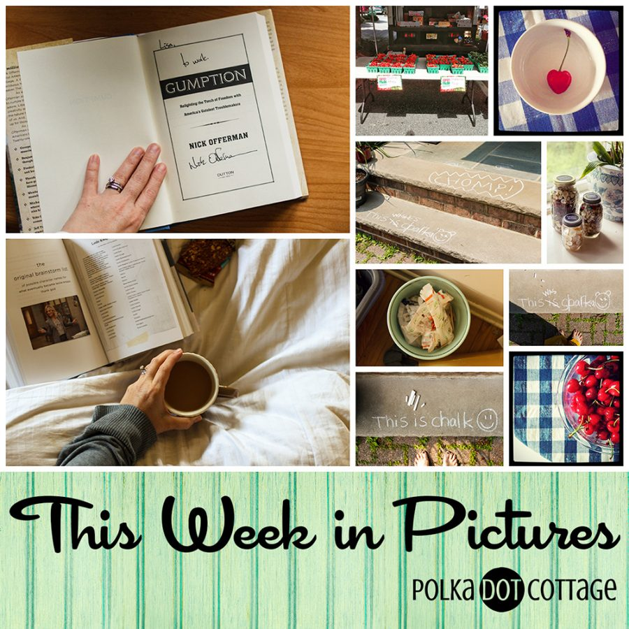 This Week in Pictures, Week 24, 2015