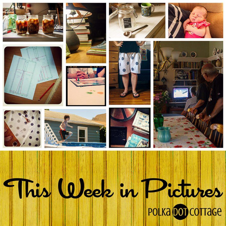 This Week in Pictures, Week 26, 2015