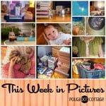 This Week in Pictures, Week 27, 2015