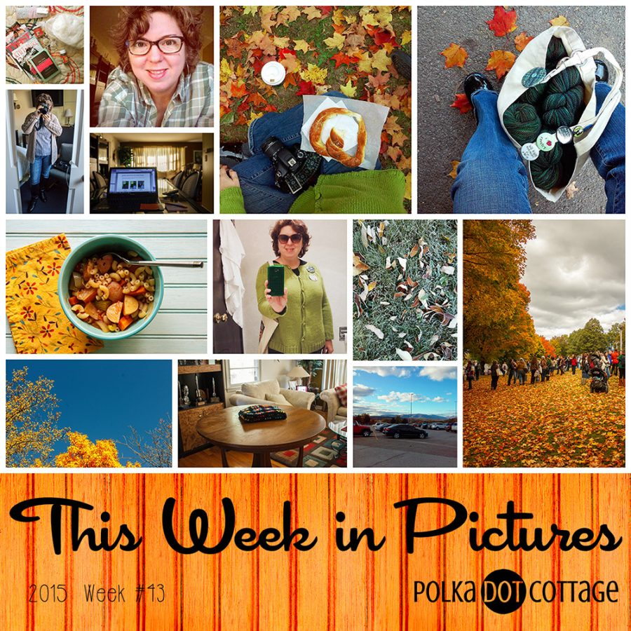 This Week in Pictures, Week 43, 2015