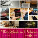 This Week in Pictures, Week 46, 2015