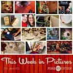 This Week in Pictures, Week 53, 2015