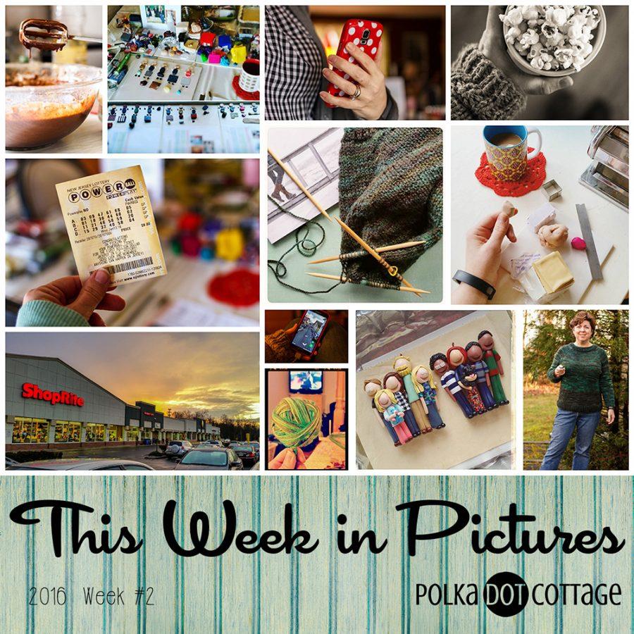 This Week in Pictures, Week 2, 2016
