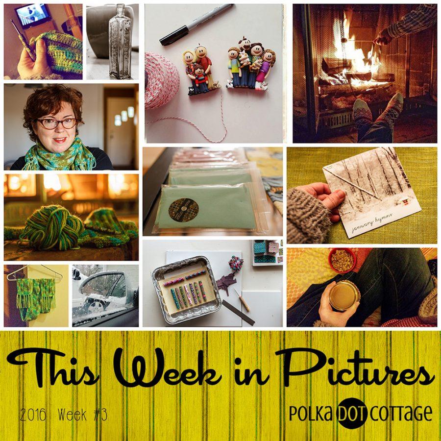 This Week in Pictures, Week 3, 2016