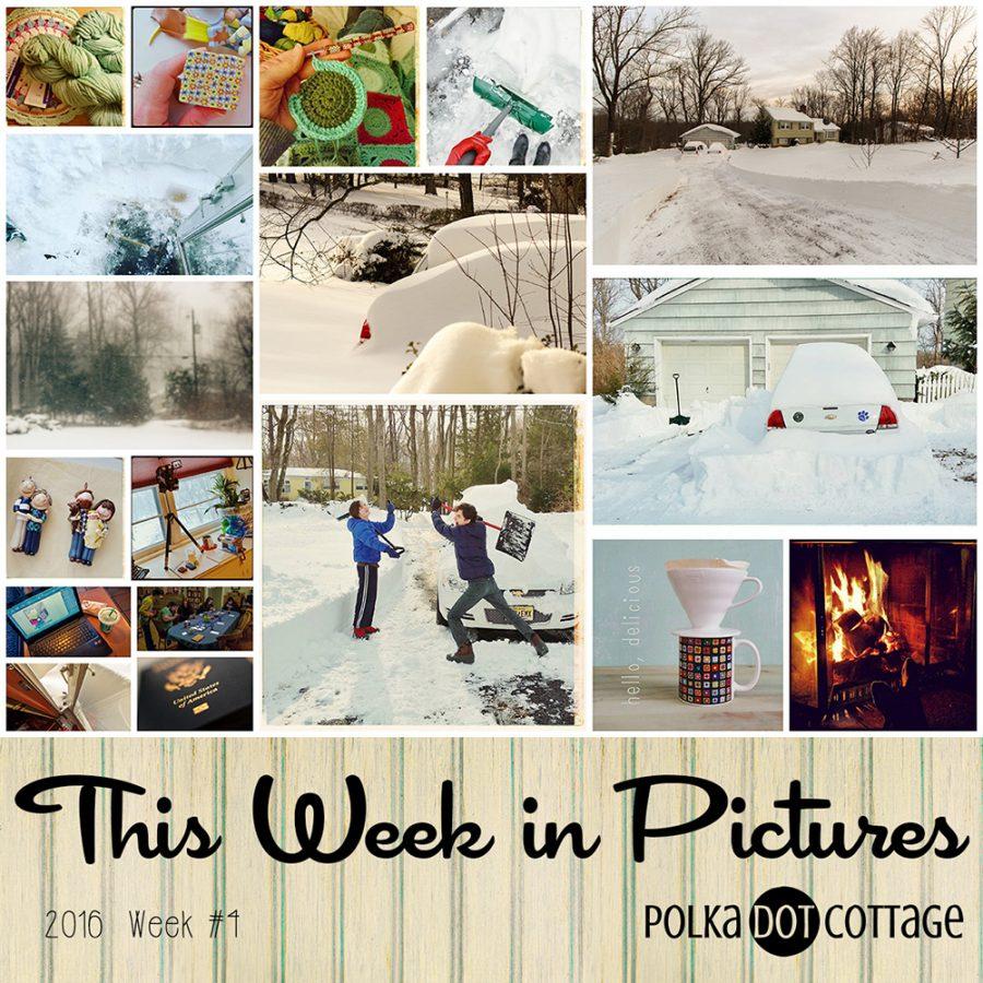 This Week in Pictures, Week 4, 2016