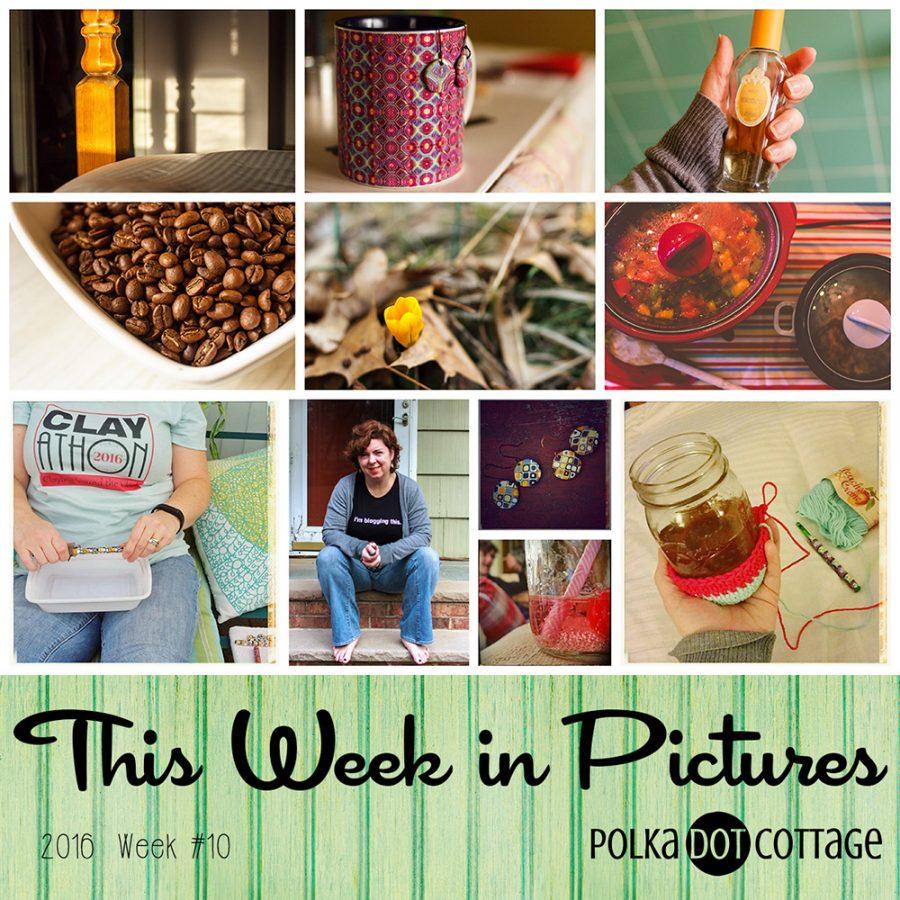 This Week in Pictures, Week 10, 2016