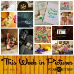 This Week in Pictures, Week 11, 2016
