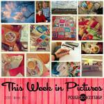 This Week in Pictures, Week 12, 2016
