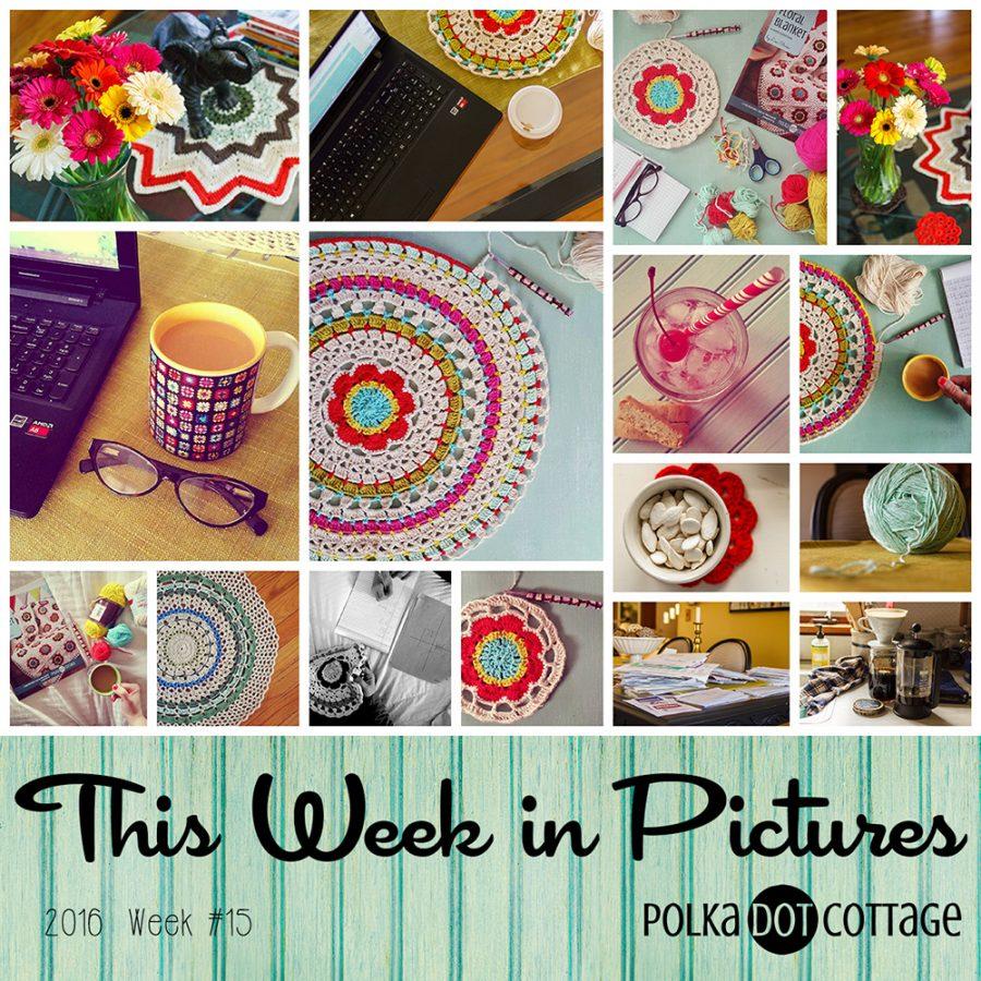 This Week in Pictures, Week 15, 2016