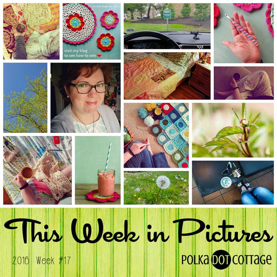 This Week in Pictures, Week 17, 2016