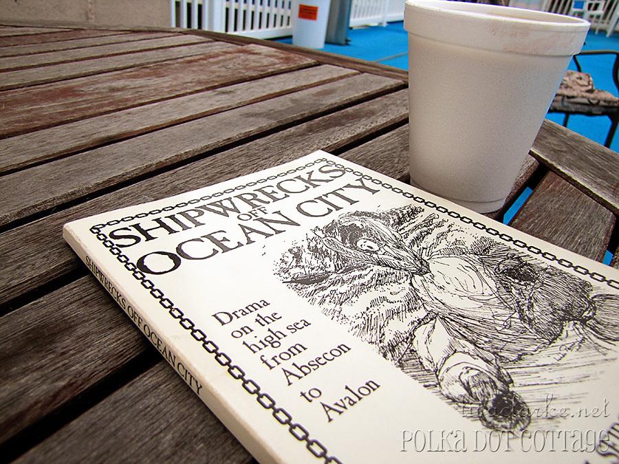 2011 Beach Reading