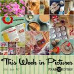This Week in Pictures, Week 18, 2016