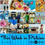 This Week in Pictures, Week 21, 2016