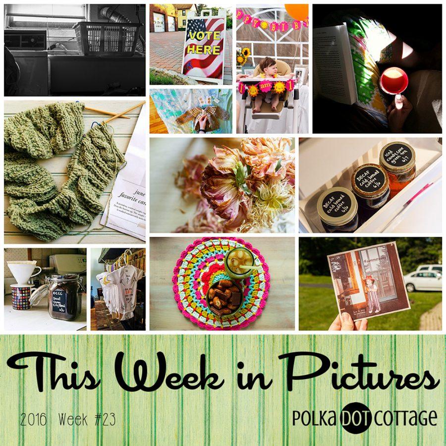 This Week in Pictures, Week 23, 2016