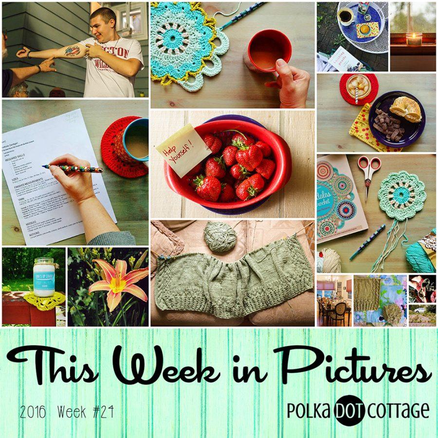 This Week in Pictures, Week 24, 2016