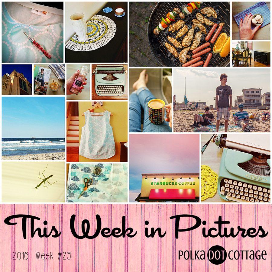 This Week in Pictures, Week 29, 2016