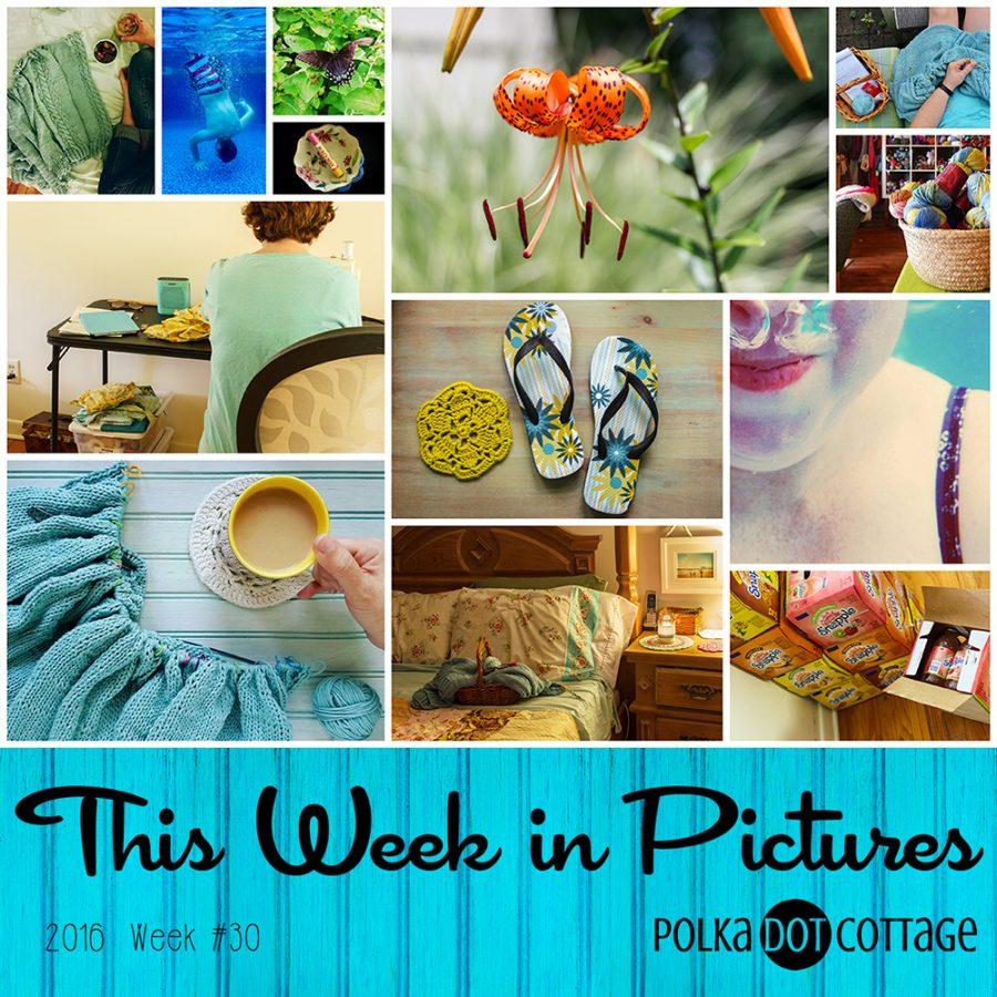 This Week in Pictures, Week 30, 2016