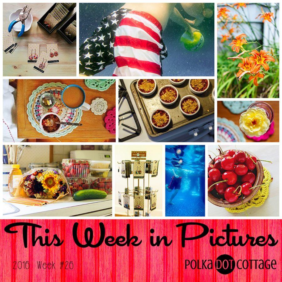 This Week in Pictures, Week 26, 2016
