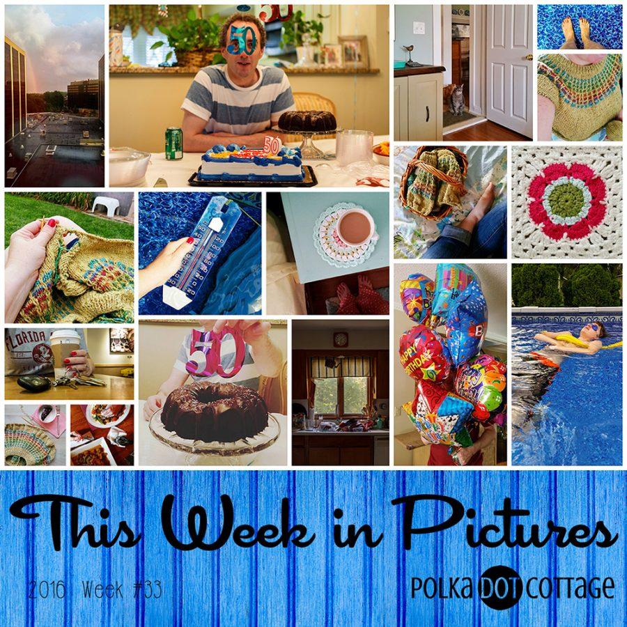 This Week in Pictures, Week 33, 2016