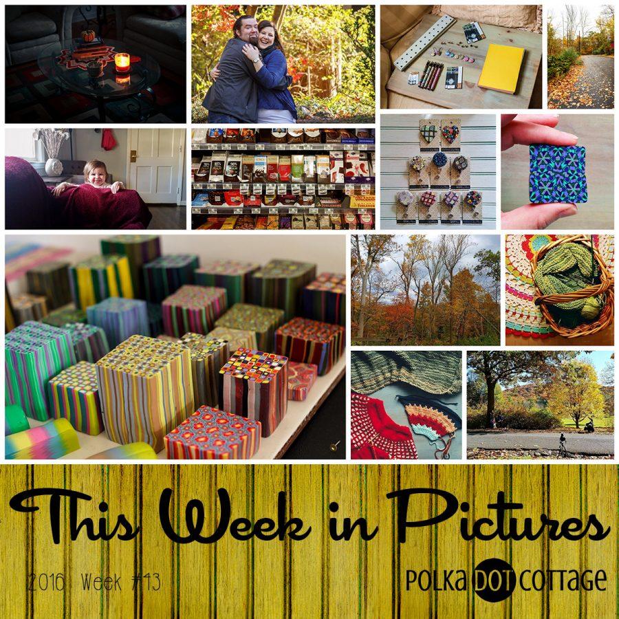 This Week in Pictures, Week 43, 2016