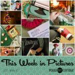 This Week in Pictures, Week 1, 2017