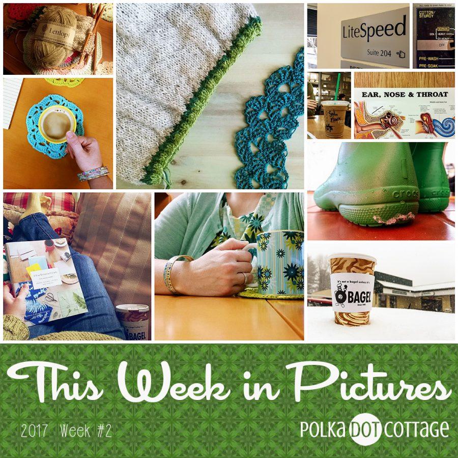 This Week in Pictures, Week 2, 2017