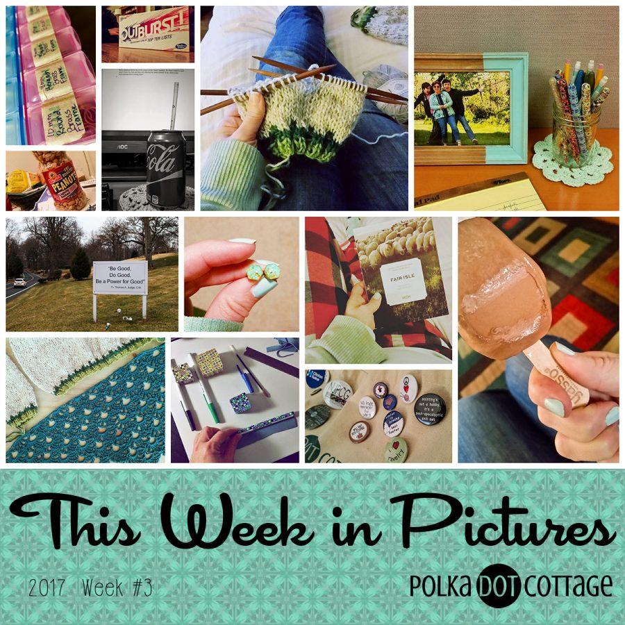 This Week in Pictures, Week 3, 2017