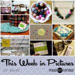 This Week in Pictures: Week 10, 2017