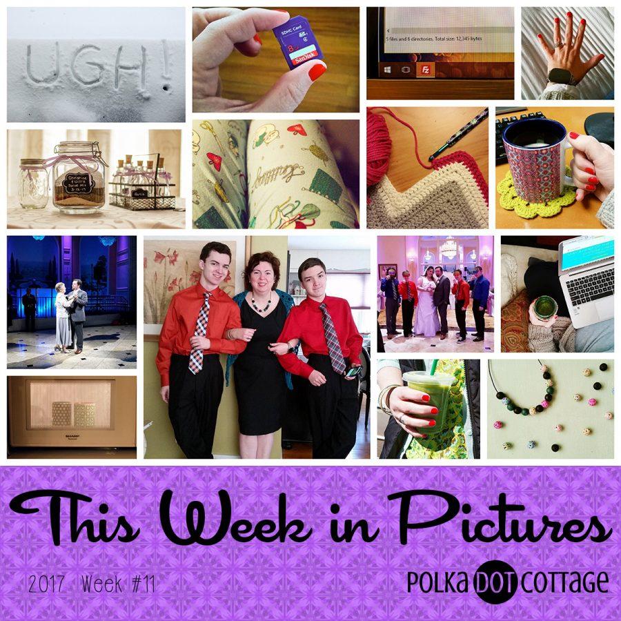 This Week in Pictures, Week 11, 2017