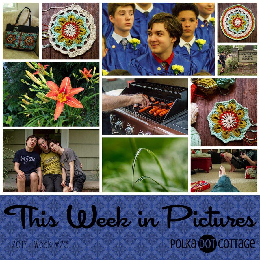 This Week in Pictures, Week 25, 2017