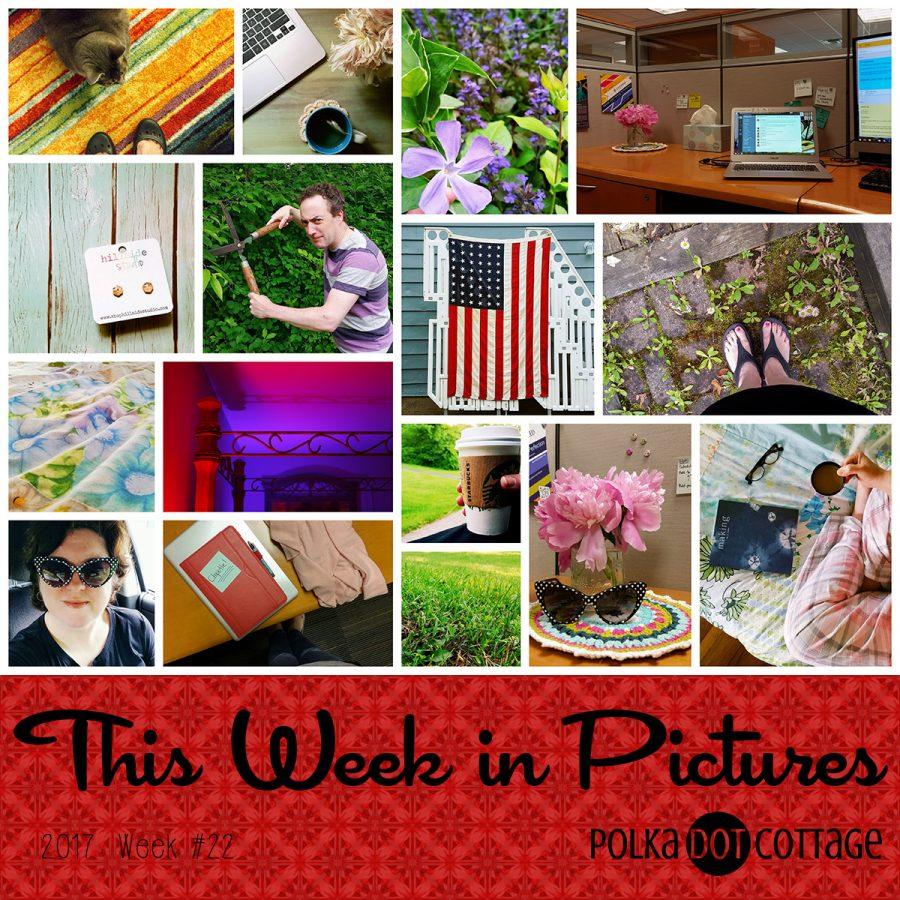 This Week in Pictures, Week 22, 2017