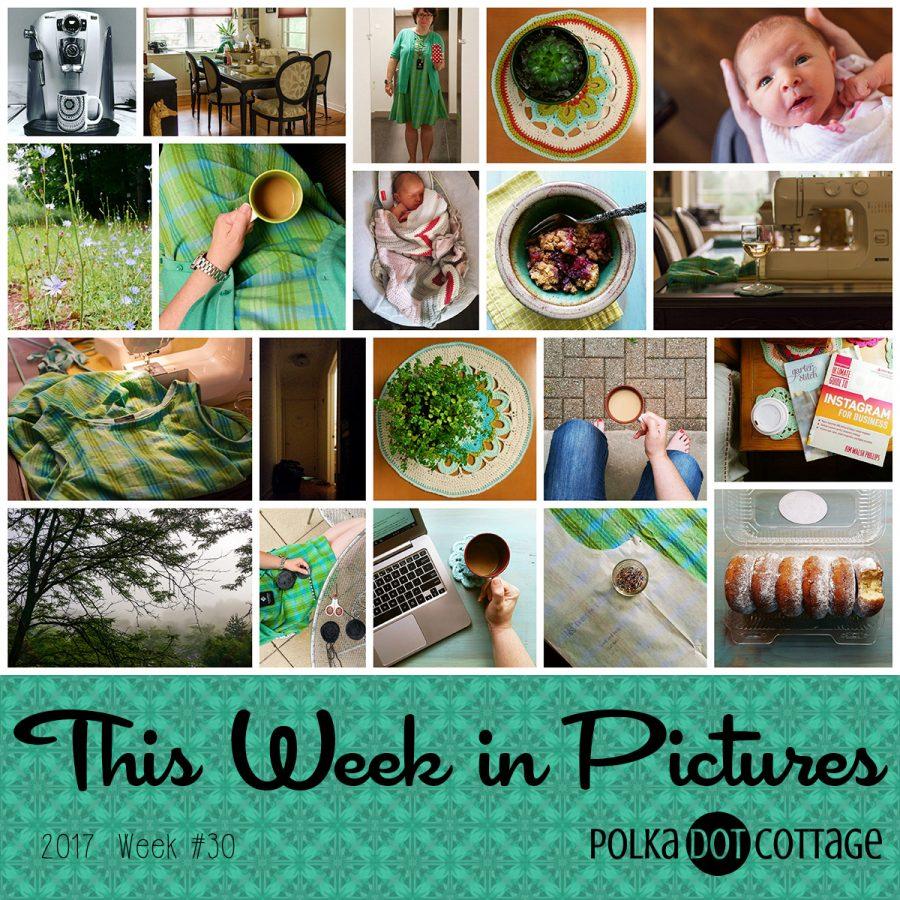 This Week in Pictures, Week 30, 2017