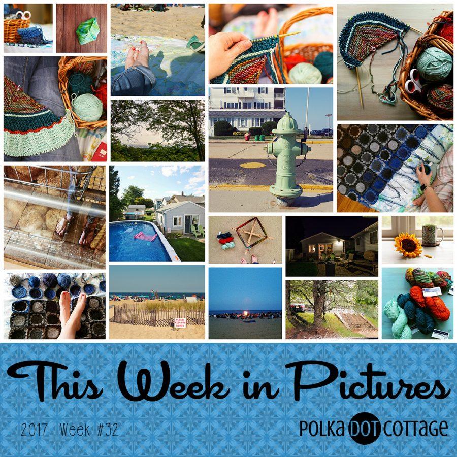 This Week in Pictures, Week 32, 2017