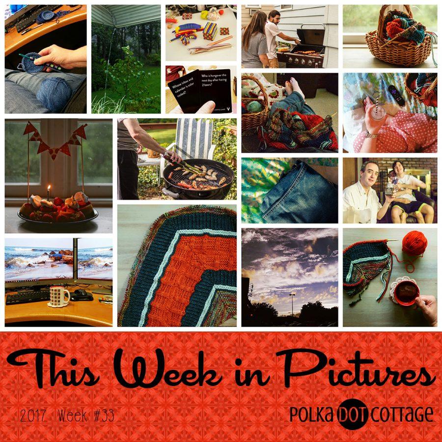 This Week in Pictures, Week 33, 2017