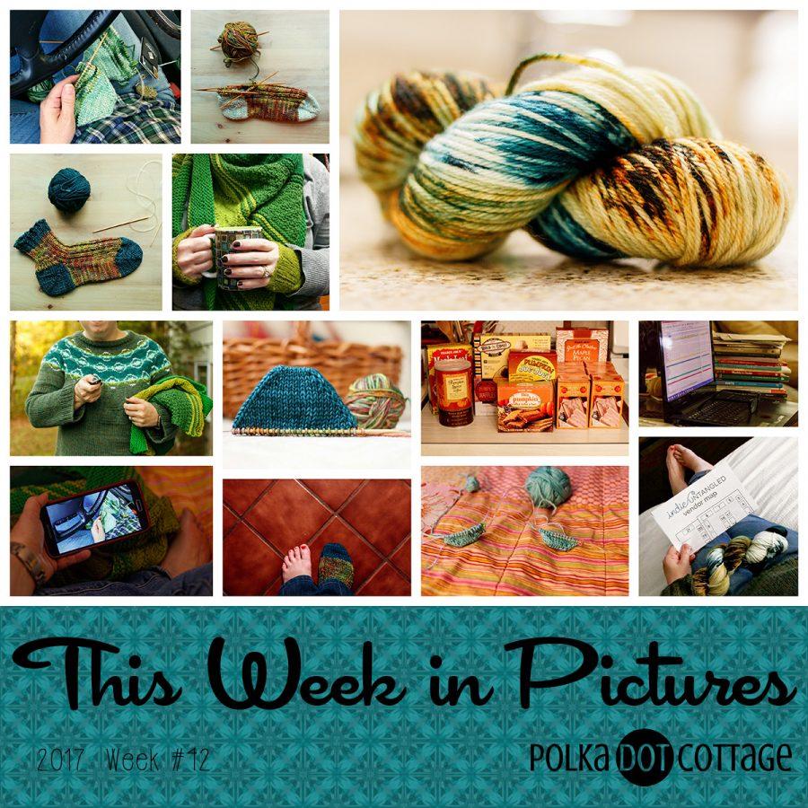 This Week in Pictures, Week 42, 2017