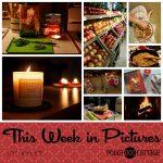 This Week in Pictures, Week 46, 2017