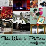 This Week in Pictures, Week 2, 2018