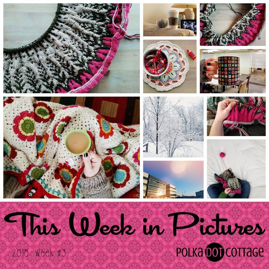 This Week in Pictures, Week 3, 2018