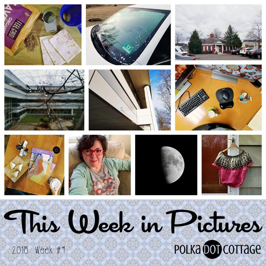 This Week in Pictures, Week 4, 2018