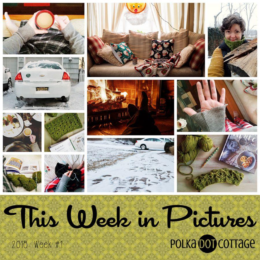 This Week in Pictures, Week 1, 2018