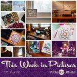 This Week in Pictures, Week 10, 2018