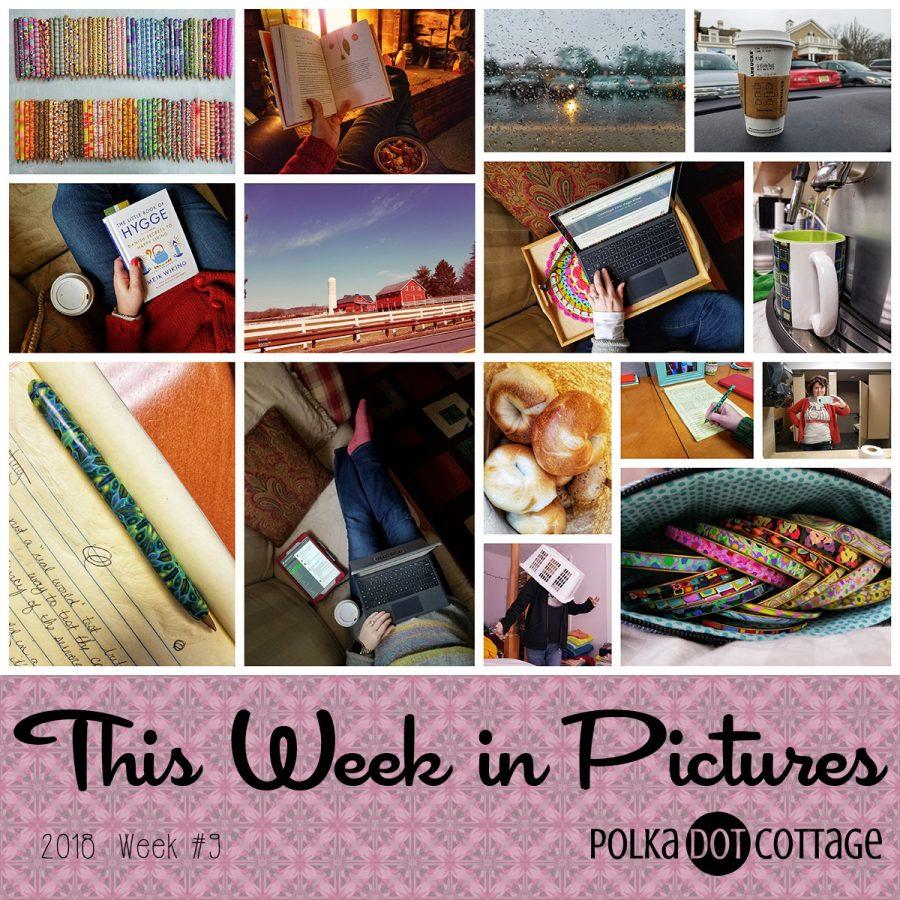 This Week in Pictures, Week 9, 2018