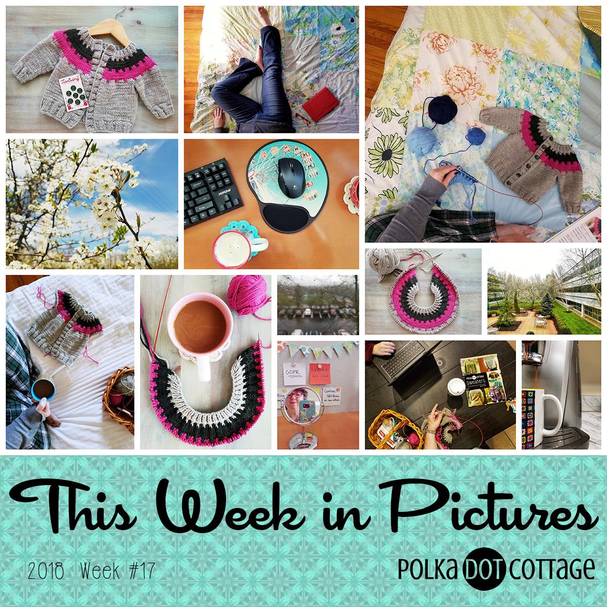 This Week in Pictures, Week 17, 2018
