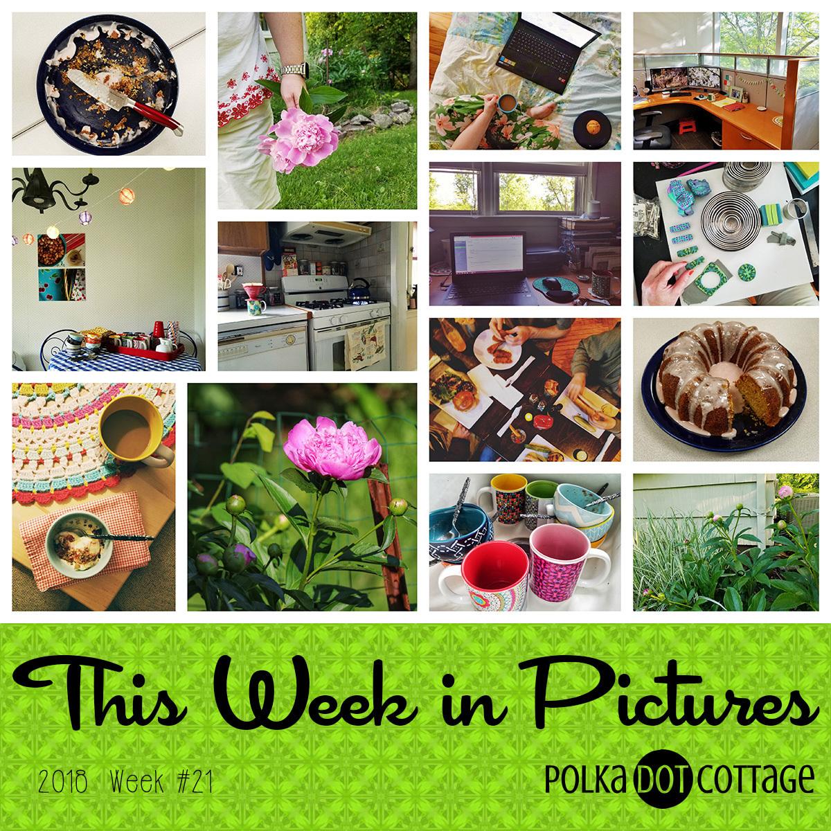 This week in Pictures, Week 21, 2018