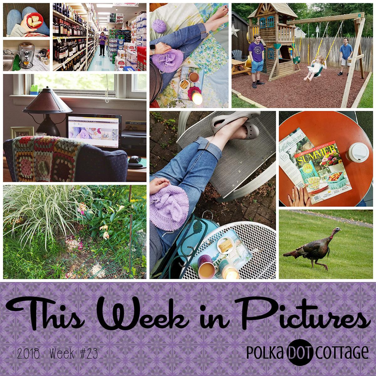 This Week in Pictures, Week 23, 2018