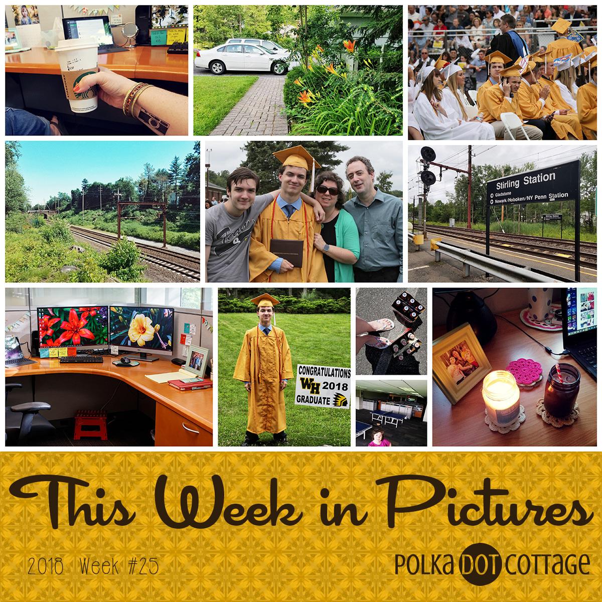 This Week in Pictures, Week 25, 2018
