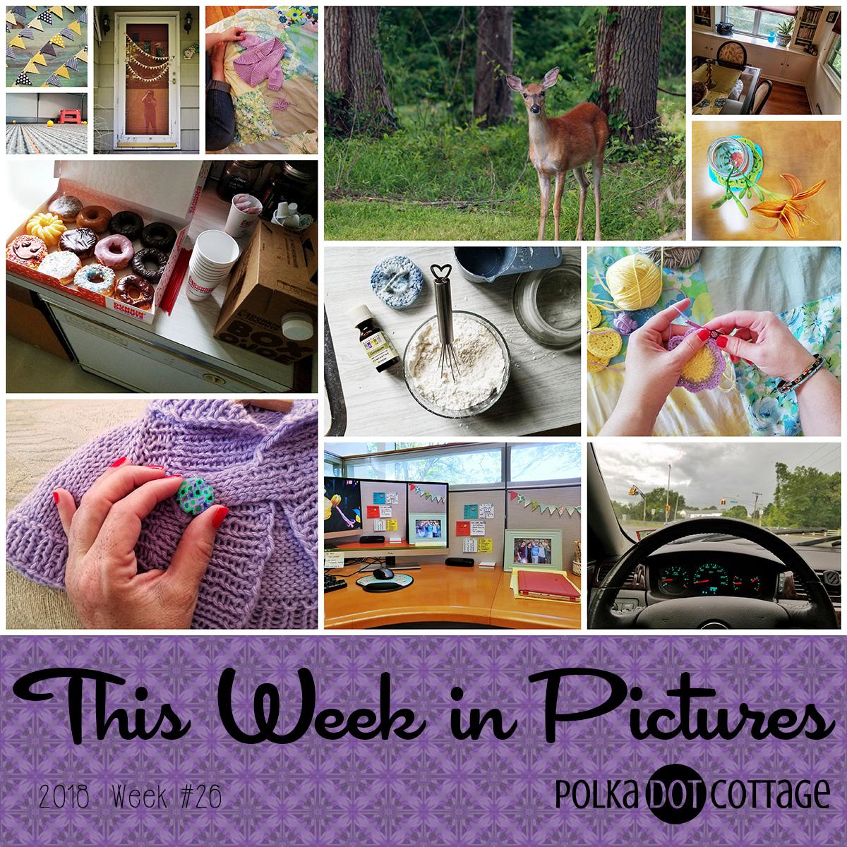 This Week in Pictures, Week 26, 2018