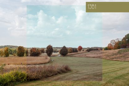 Polka Dot Cottage Lightroom Presets and Photoshop Actions Creative Collection #1: 1981