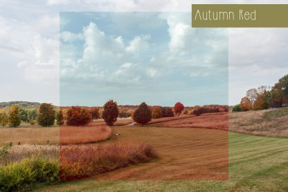Polka Dot Cottage Lightroom Presets and Photoshop Actions Creative Collection #1: Autumn Red